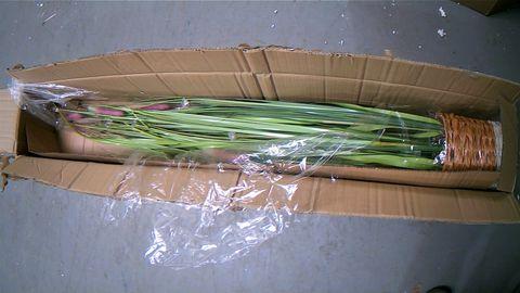 LED ILLUMINATED SETA GRASS - MAUVE