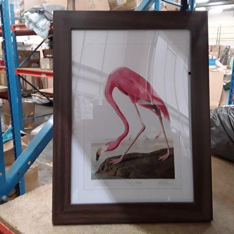 PINK FLAMINGO BY JOHN JAMES AUDUBON - GRAPHIC ART ON CANVAS