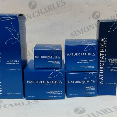 LOT OF 6 NATUROPATHICA SKIN CARE ITEMS