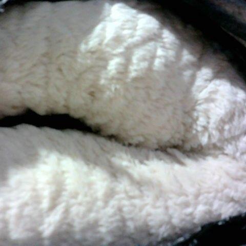 COZEE PAWS MEDIUM SOFA PET BED