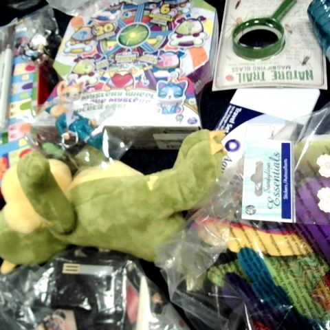 LOT OF APPROX 50 ASSORTED ITEMS TO INCLUDE: PACKETS OF FART BOMBS, COLOURING PENCILS, HATCHIMALS