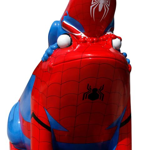 Stockport Spiderfrog